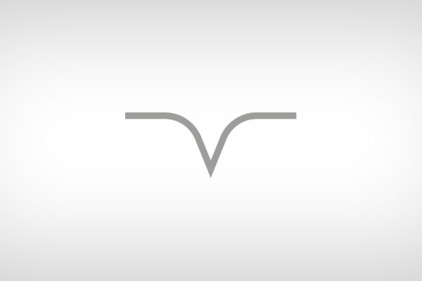 Business & Data Intelligence – PvP Consulting – Tivoli